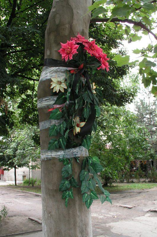 Johannes Tolk – Flowers – Chisinau, Moldova, 2007